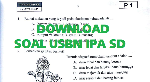 Soal Latihan dan Pembahasa Soal USBN IPA SD 2018 2019