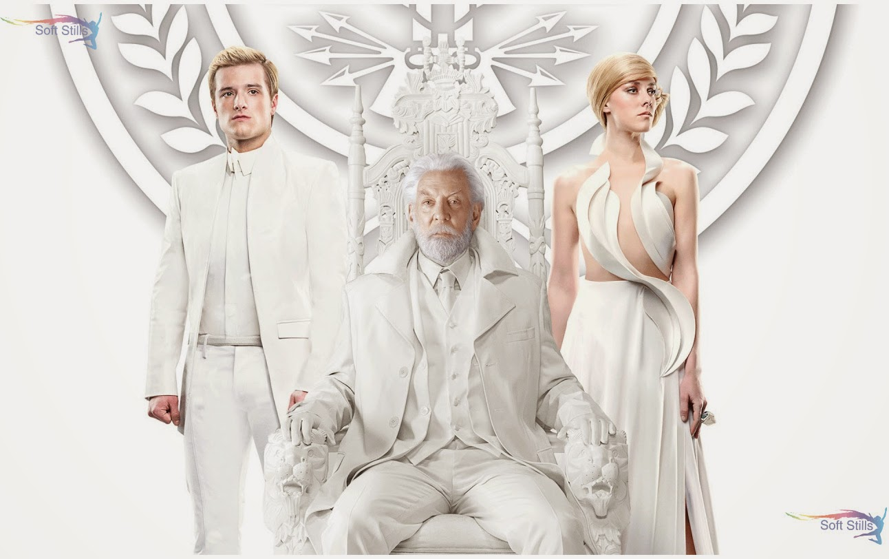 Download The Hunger Games Mockingjay Part 1 2014 HD & Widescreen Movies Wallpaper