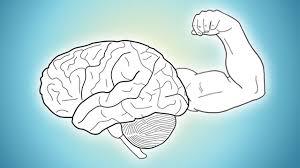 Cara Melatih Otak Paling Jitu Agar Cerdas dan Kreatif