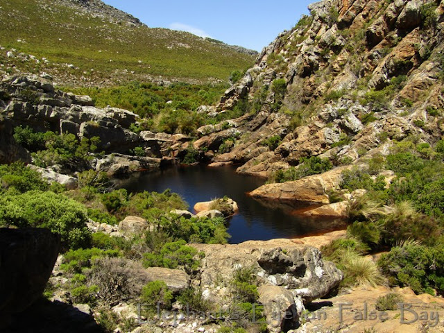 Mountain pool near Steenbras