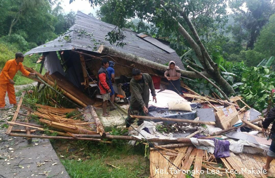 Satu Unit Rumah di Tarongko Hancur Ditimpa Pohon Tumbang