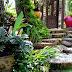 Tips Membuat Taman Rumah Hemat Biaya, Tukang Taman Murah