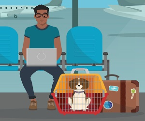 Pet Air Travel Rules