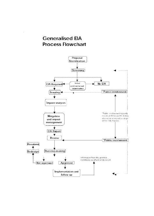 Generalised EIA process flowchart
