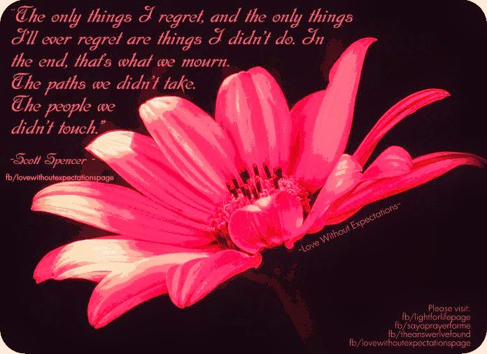 Dont I I Things Done Regret I Wen Didnt Chance I Regret I Have Do Had Things