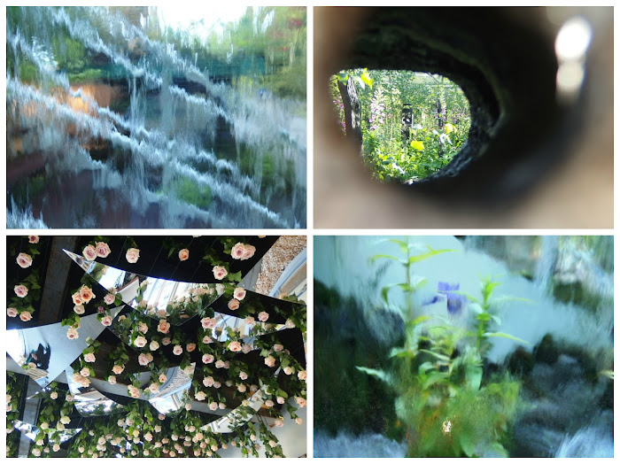 Collage of 4 abstract images from Chelsea Flower Show