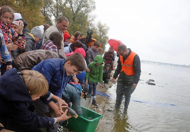 дети выпускают рыбу в Днепр