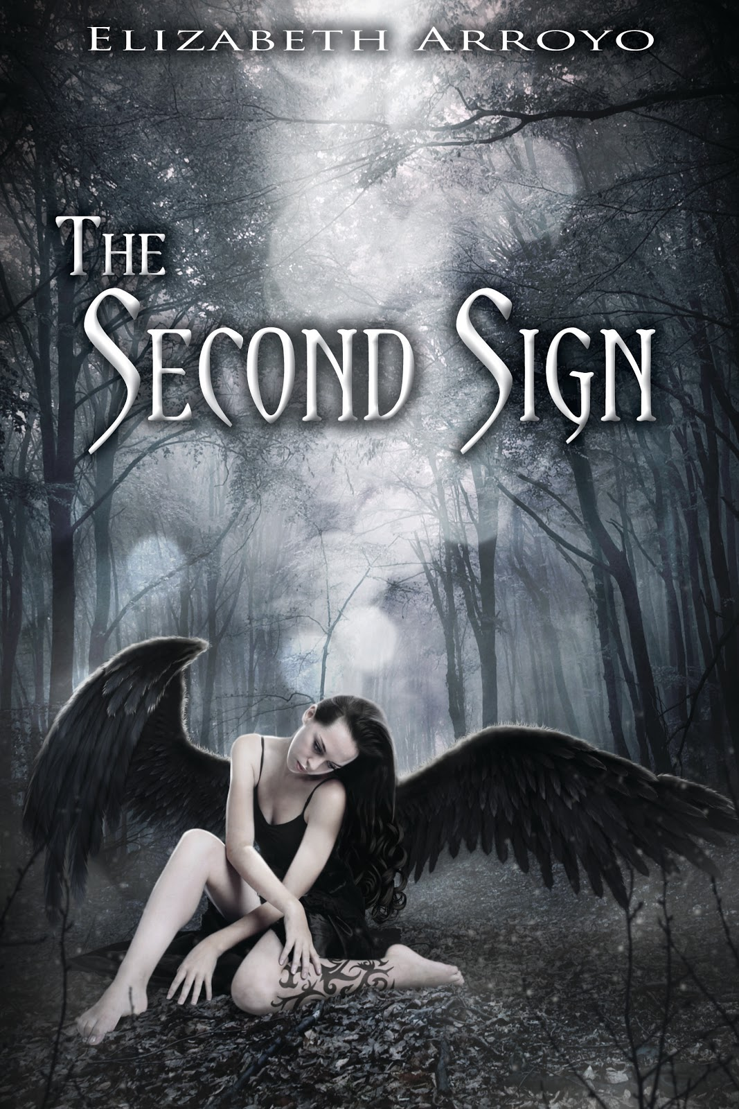 http://www.whatsbeyondforks.com/2013/03/the-second-sign-tour-review-giveaway-of.html