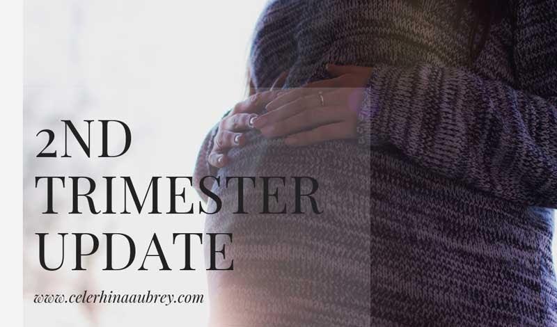 Pregnancy Update: 2nd Trimester