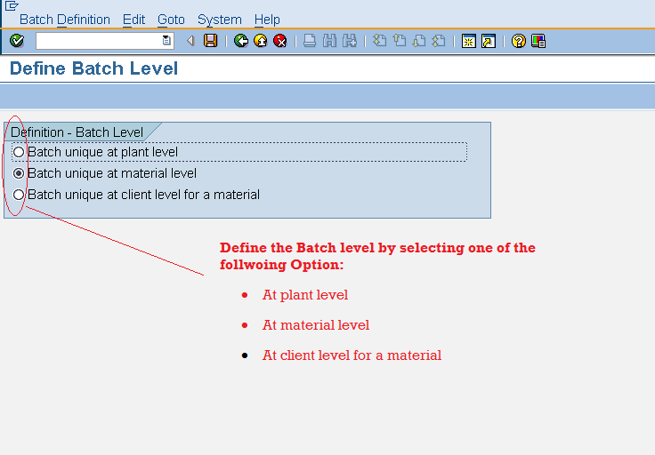batch management in sap mm pdf