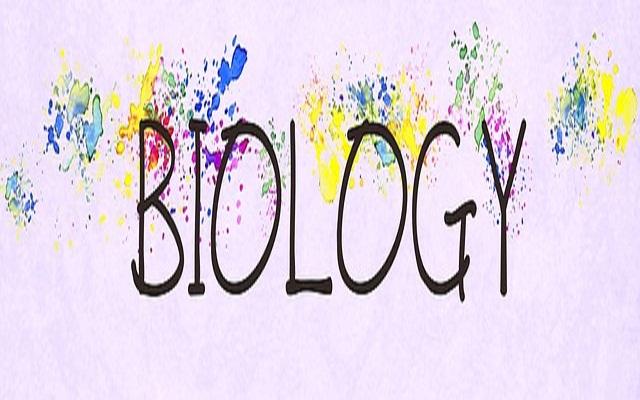 Kerja Ilmiah Biologi Smp Kelas 7