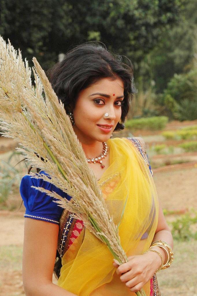 glorious Shriya pics from chandra