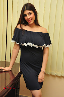 Actress Aditi Singh Pictures in Black Short Dress at tur Talkies 2 Movie Opening  0033.JPG
