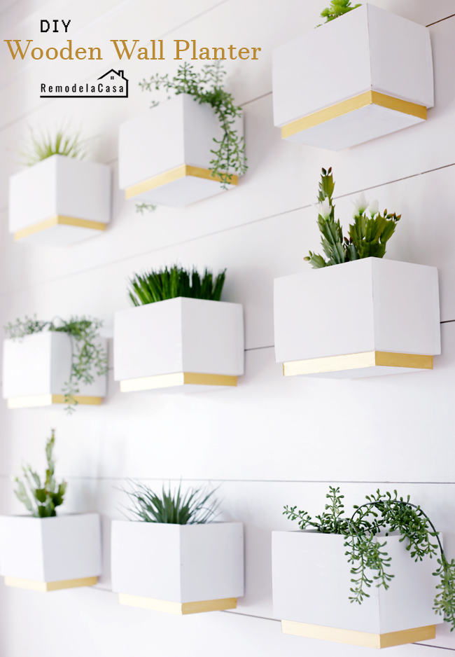 Spring decor ideas with plant gallery wall