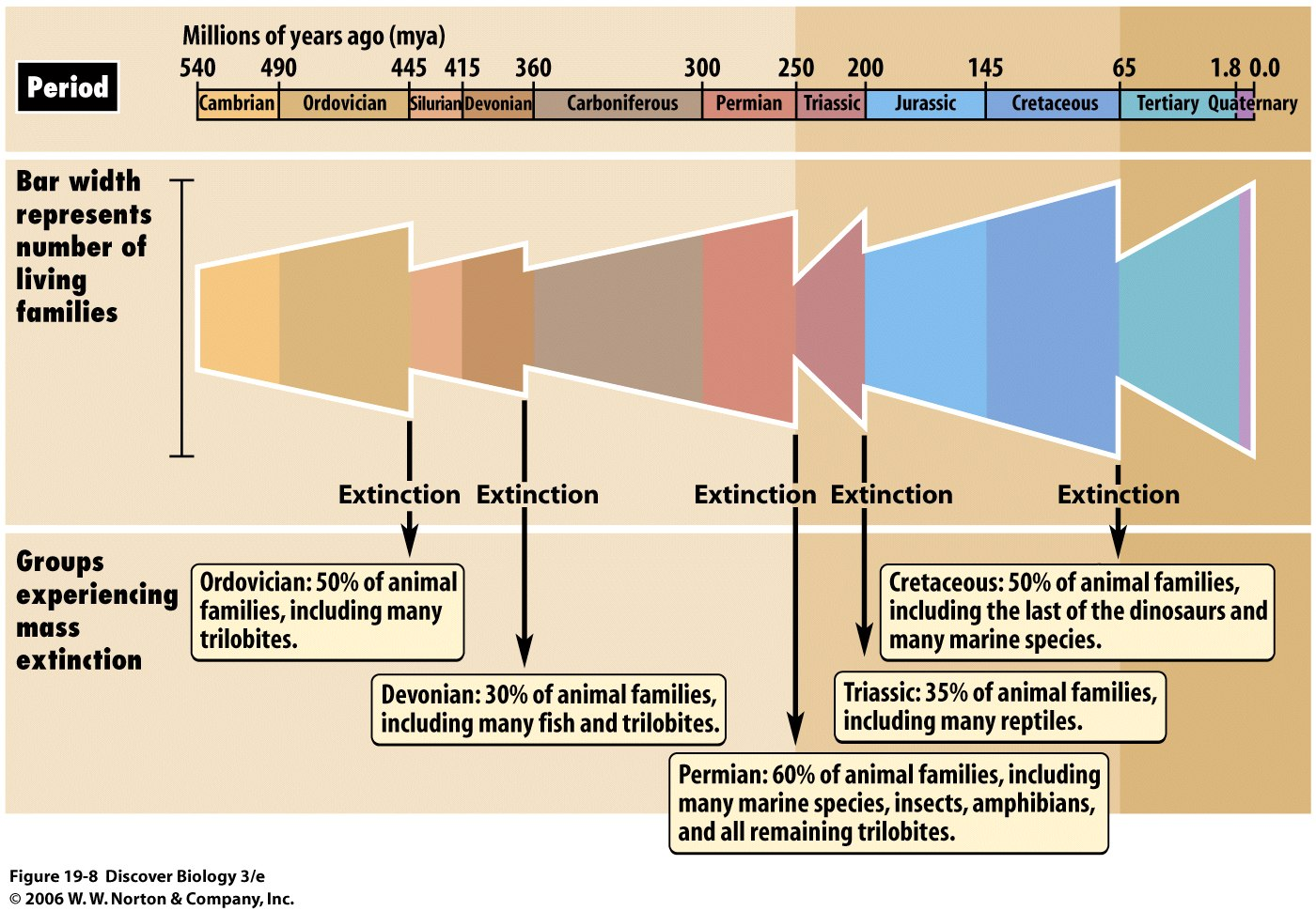 1547  Mass Extinctions: What Causes Species Die Off?