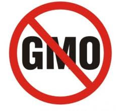 First Long Term Scientific Study on GMO's Negative Health Effects Creates Grave Concern