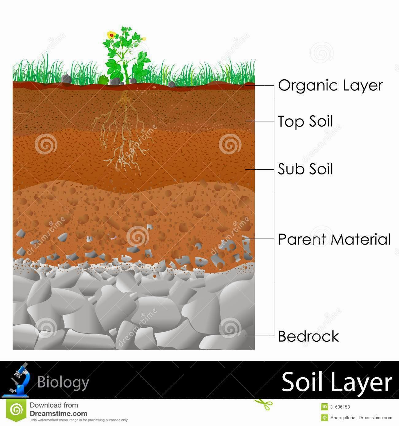 Team Tipuranga Soil Layers