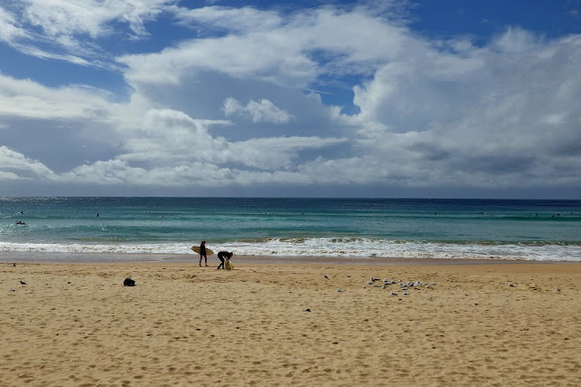 Manly, Beach, Strand, Surfer, Girls, Meer