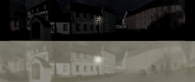 So sánh tầm nhìn ban đêm của mắt mèo và mắt người