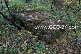 Лес у деревни Веселое. Брошенная бетонная плита