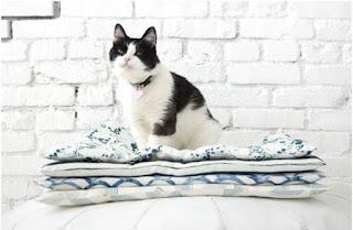 evde kedi yatağı nasıl yapılır