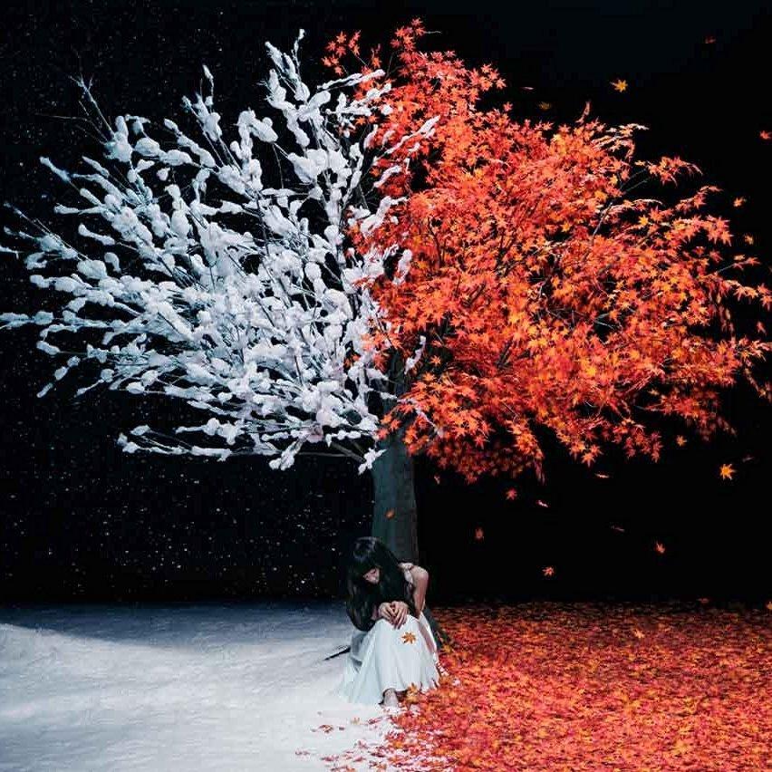 Aimer – everlasting snow