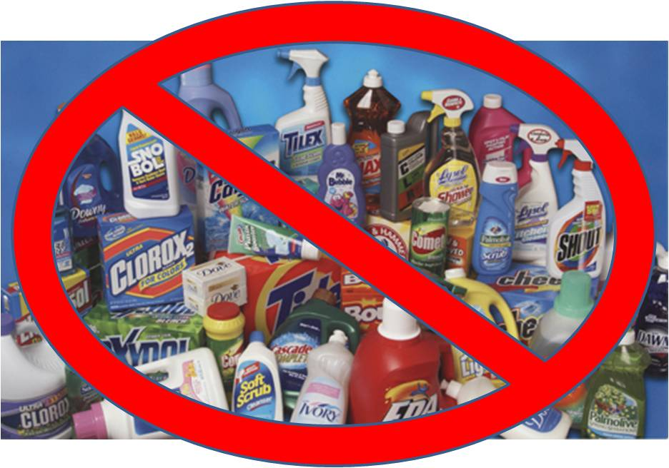 Effect of household chemicals on plants