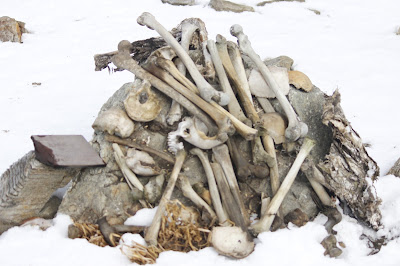 Pic : Skeletons near the frozen roopkund lake
