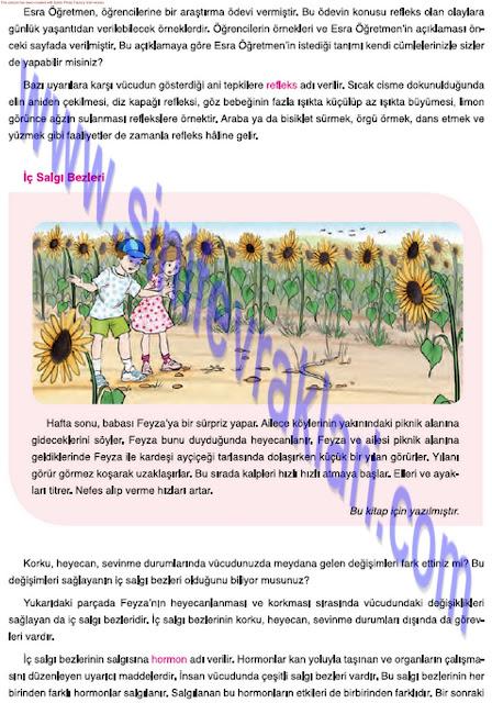 7. Sınıf Mevsim Yayınları Fen Bilimleri Ders Kitabı Cevapları Sayfa 36