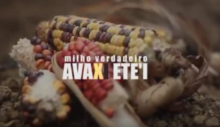 """Frame do filme """"Avaxi Ete'i"""". Imagem: acervo Thiago Carvalho Wera'i"""