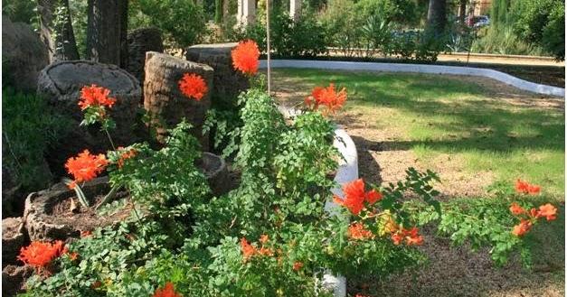 Escuela de jardiner a joaqu n romero murube tecomaria for Escuela de jardineria