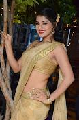 Yamini Bhaskar sizzling in saree-thumbnail-3
