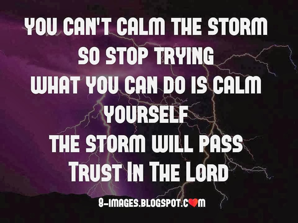 Calm Yourself The Storm Will Pass Quotes