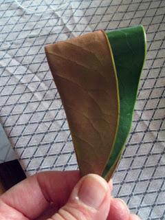 Decorazioni Natalizie Con Foglie Di Magnolia.Stelledilatta Ghirlanda Autunnale
