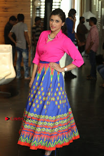 Actress Mannar Chopra in Pink Top and Blue Skirt at Rogue movie Interview  0091.JPG