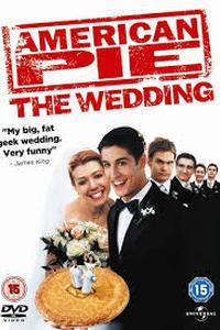 American Wedding (2003) Movie (Dual Audio) (Hindi-English) 480p-720p-1080p