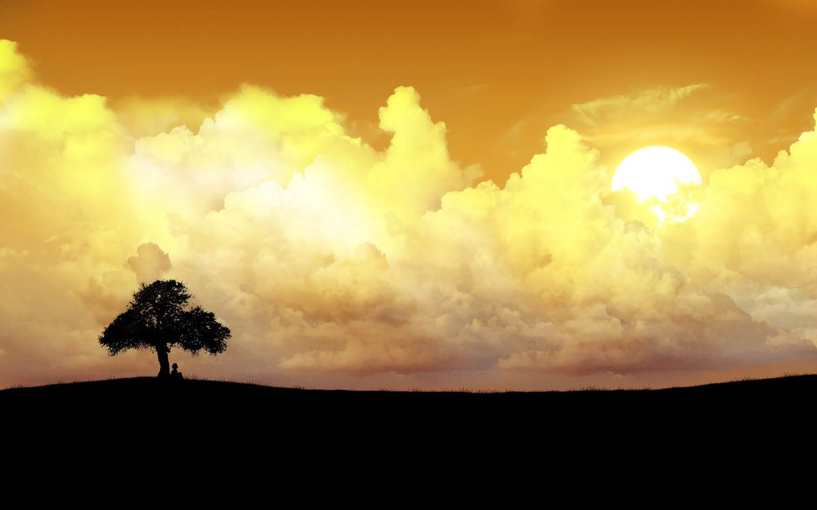 wallpapers: Lonely Tree Photography Wallpapers