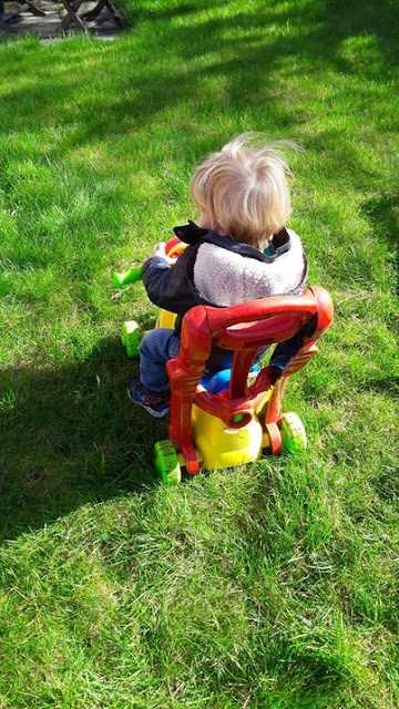 outdoor, trike, play