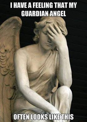 Confused angel funny pic