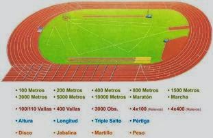 http://concurso.cnice.mec.es/cnice2005/50_educacion_atletismo/curso/archivos/instalacionesflash.swf