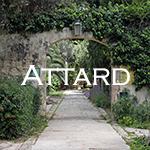 Attard=