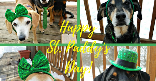Happy St Paddy's Day #StPatricksDay