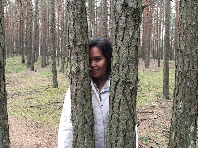 Polski las wiosną - poszukując raju
