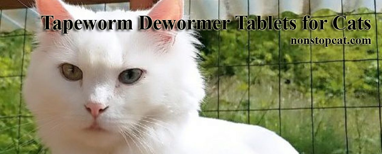 Tapeworm Dewormer Tablets for Cats