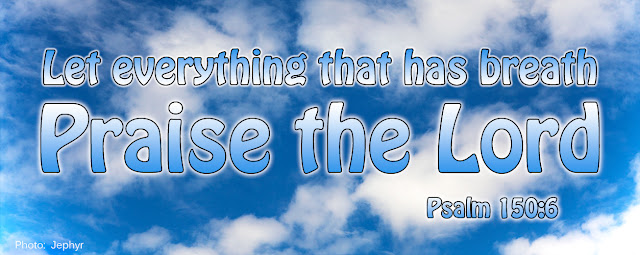 Let Everything that has breath Praise the Lord - Psalm 150:6 - Photo:  Jephyr