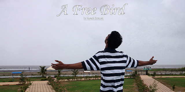 Cover Photo: A Free Bird - Ronak Sawant