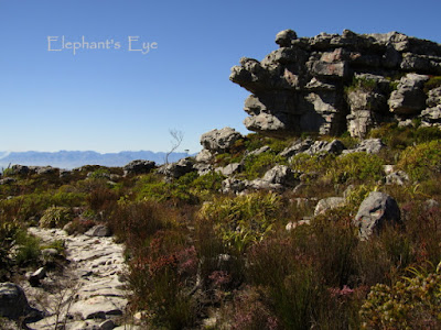Silvermine East