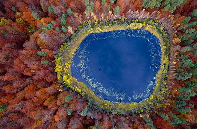 Bird Eye View Landscape Nature Autumn Photography Forest Lake
