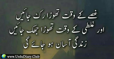 Precious Golden Words in Urdu | Beautiful Precious Urdu quotes with Images