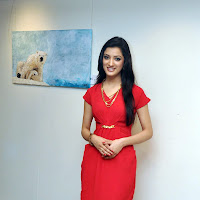 Glamorous Richa panai cute in red dress